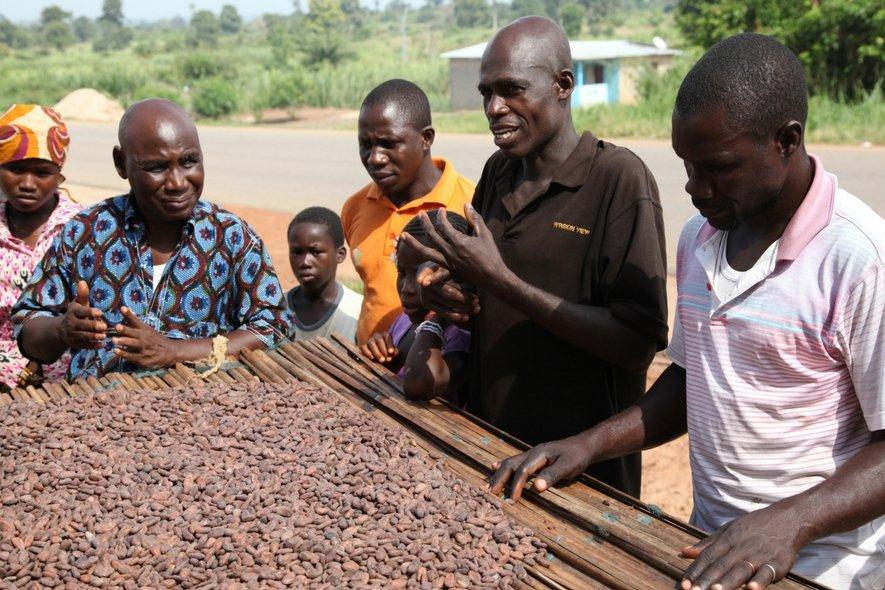barry callebaut cacao ivoorkust