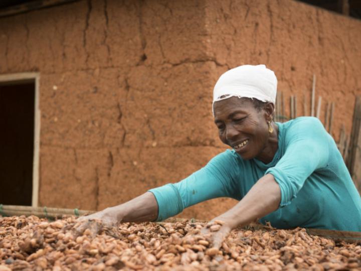 Fairtrade en Tony's Chocolonely bundelen krachten voor leefbaar inkomen cacaoboer