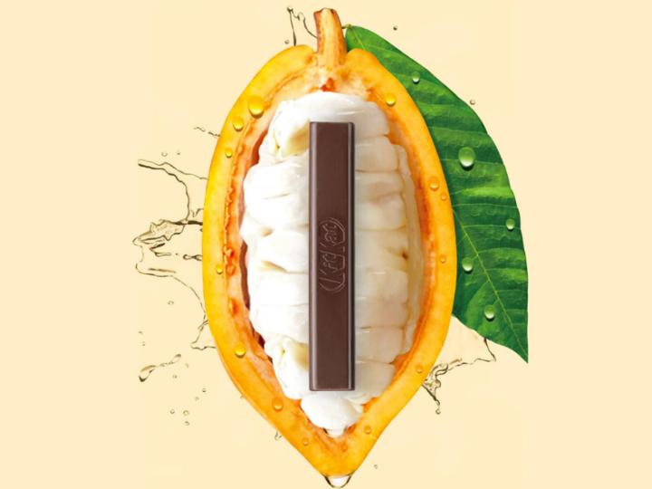 Nestlé maakt nieuwe chocolade van enkel cacaovrucht